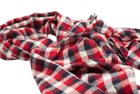 The Toran Gingham Cashmere Scarf shirt